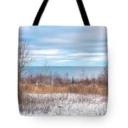 Country Winter 16 Tote Bag