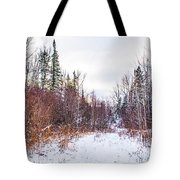 Country Winter 6 Tote Bag