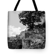 Countryside Of Italy Bnw 2 Tote Bag