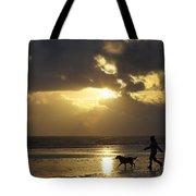 County Meath, Ireland Girl Walking Dog Tote Bag