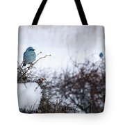 Couple Chilly Bluebirds Tote Bag