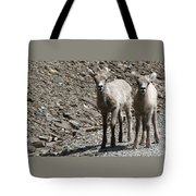 Couple Of Cuties- Baby Bighorn Tote Bag
