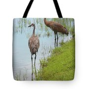 Couple Of Sandhills By Pond Tote Bag