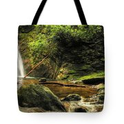 Courthouse Waterfall Tote Bag