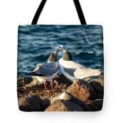 Courtship Conversation Tote Bag