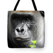 Cousin Number 12 Tote Bag