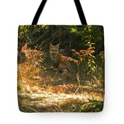 Cover Shot Tote Bag
