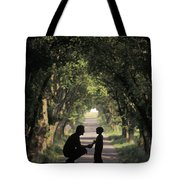 Covered Bridge Silhouettes In Mount Tote Bag