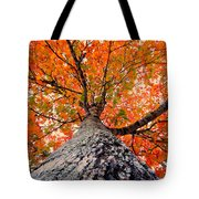 Covered In Fall Tote Bag