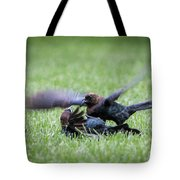Cow Bird Fight Tote Bag