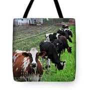 Cow Line Up Tote Bag