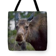 Cow Moose-signed-#4036 Tote Bag