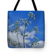 Cow Parsley Blossoms Tote Bag