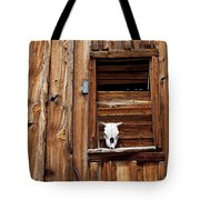 Cow Skull In Wooden Window Tote Bag by Garry Gay