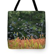 Cowbirds In Flight Over Milo Fields In Shiloh National Military Park Tote Bag