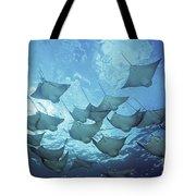 Cownose Rays Tote Bag