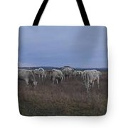 Cows And Cows Tote Bag