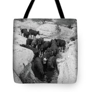 Cows In The Hole Tote Bag