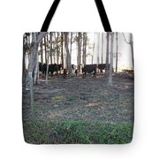 Cows In The Woods Tote Bag