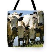 Cows Tote Bag