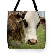 Cows8937 Tote Bag