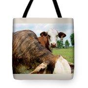 Cows8938 Tote Bag