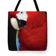 Coy Scarlet Macaw Tote Bag