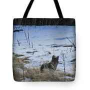 Coyote Food Hunting Tote Bag