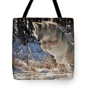 Coyote In Mid Jump Tote Bag