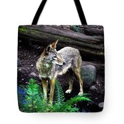 Coyote In Mid Stream Tote Bag