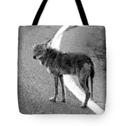 Coyote On The Road Tote Bag