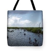 Ominous Clouds Over A Cozumel Mexico Swamp  Tote Bag