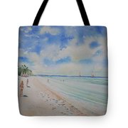 Cozumel Mexico Tote Bag