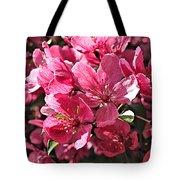 Crab Apple Blossoms 04302015-1 Tote Bag