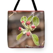 Crab Apple Buds Tote Bag