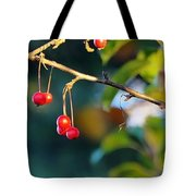 Crab Apples Branches P 6543 Tote Bag