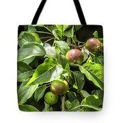 Crab Apples Tote Bag
