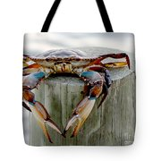 Crab Hanging Out Tote Bag