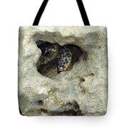 Crab Hiding In A Rock On The Seashore Tote Bag