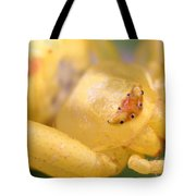 Crab Spider Head Tote Bag