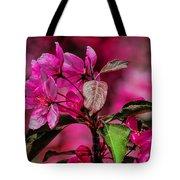Crabapple Tree Blossoms Tote Bag