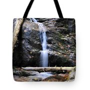 Crabtree Falls In Fall Tote Bag