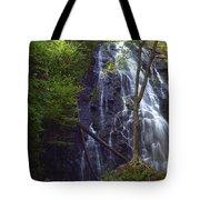 Crabtree Falls Tote Bag