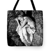 Cracked Tote Bag by Scott Sawyer