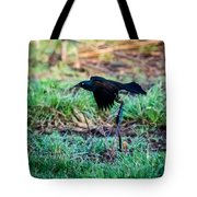 Grackle In The Morning  Tote Bag