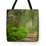 Craggy Steps Tote Bag