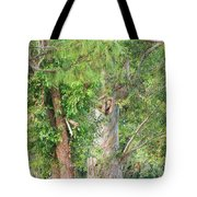 Craggy Tree For Will Tote Bag