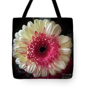 Cranberry And White Tote Bag