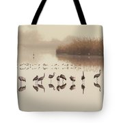 Cranes In Line Tote Bag