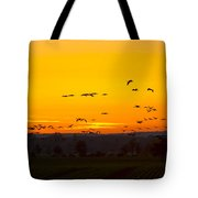 Cranes In The Evening Tote Bag
